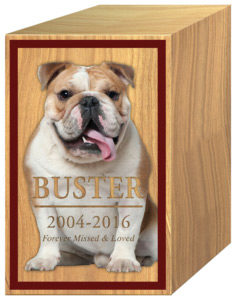 Pet Cremation Urn Name Date Photo