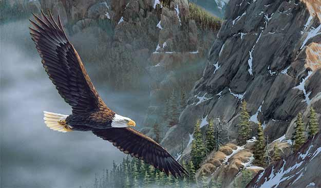 Eagle Flying Mountains